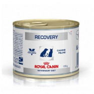 image of Royal Canin Recovery Canned Food For Cats & Dogs 156g X 6 Canned