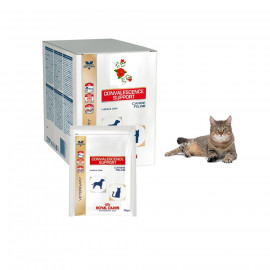 image of Royal Canin Convalescence Support For Cat & Dog 10 X 100g