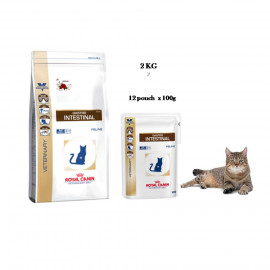 image of BUNDLES SET !!! 12x 100g Royal Canin Gastro Intestinal & 2 KG Dry Food For Cat