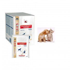 image of ROYAL CANIN Convalescence Support Instant 10 Sachets 50g
