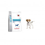 image of Royal Canin Hypoallergenic Small Dog 1kg