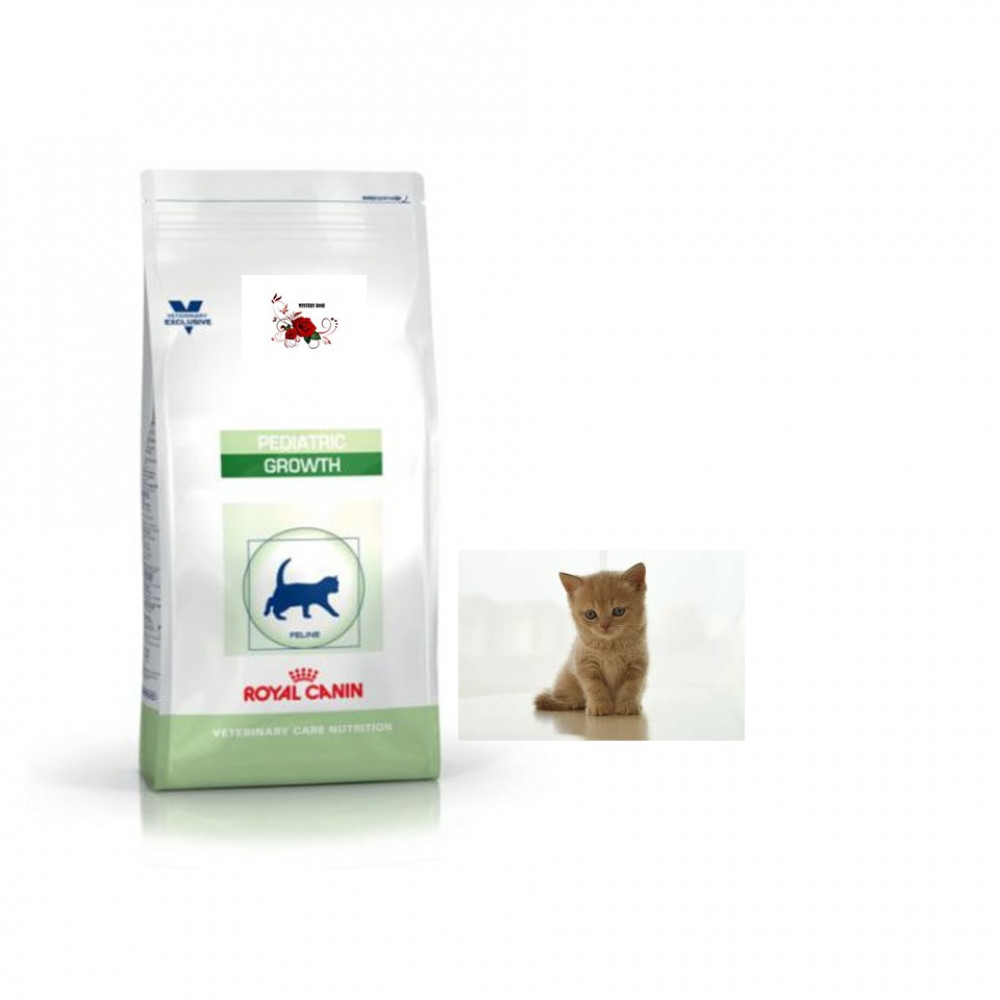 ROYAL CANIN GROWTH For KITTEN Dry Food 4 Kg