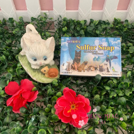 image of SST Sulfur Soap Skin Care Formula 95g