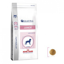 image of Royal Canin Pediatric Junior 4KG For Dogs