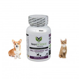 image of BEST Antioxidant Support For Pet 60 Capsules ( VetriScience)