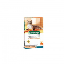 image of BAYER ADVANTAGE CAT SPOT ON 1-4 Kg ( Advantage Petcare) 4 Tubes
