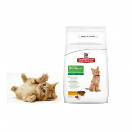 image of Ready Stock ~Hill's® Science Diet® Kitten Healthy Development Dry Food 4 KG