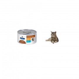 image of Hill's® Prescription Diet® K/D® Feline Vegetable & Tuna Stew 82g X 24