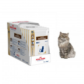image of Ready Stock ~12x Royal Canin Gastro Intestinal Feline 100G For Cats ( FREE GIFT)