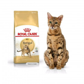 image of Royal Canin® Feline Breed Nutrition™ Bengal Adult Dry Cat Food 10 Kg