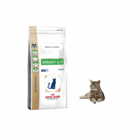 image of READY STOCK ~ Royal Canin Urinary SO Dry Cat Food 3.5 Kg