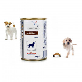 image of Royal Canin Vet Diet Gastro Intestinal Canine Wet 12 X 400g