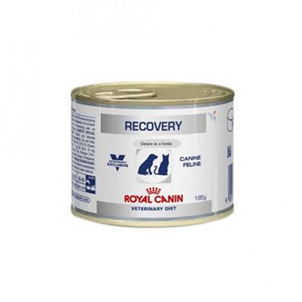 Royal Canin Recovery Canine & Feline / Wet Food For Cats & Dogs 195 G