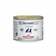 image of Royal Canin Recovery Canine & Feline / Wet Food For Cats & Dogs 195 G