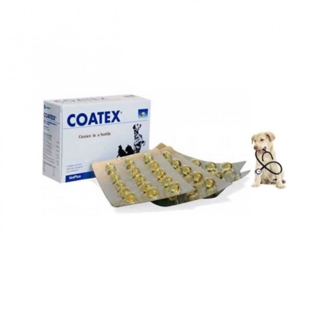 PROMOTION !! COATEX /Skin Supplement For Pets ( 60 Capsules )06/2020