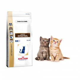 image of Really Stock ~Royal Canin Gastro Intestinal For Cats 2KG (Free Gift )