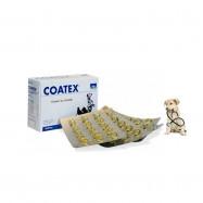 image of COMBO SET ~ COATEX 60 CAPSULE ~ 2 BOX (06/2020)