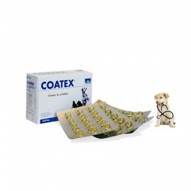 image of COMBO SET ~ COATEX 60 CAPSULE ~ 2 BOX (06/2020)