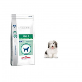 image of Royal Canin Adult Small Dog Under 10kg ~2 KG
