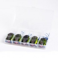 image of 5PCS TOPWATER HOLLOW BODY PVC MATERIAL SOFT FROG POPPING FISHING LURE SOFT SWIMBAIT WITH TACKLE BOX (MULTI) 0