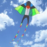 image of COLORFUL CARBON STEEL SWALLOW STYLE FLYING KITE OUTDOOR SPORTS GAME (COLORMIX) SIZE L