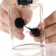 image of MAGNETIC LIQUID DISPLAY FERROFLUID IN BOTTLE AMAZING LIQUID REACTS TO MAGNET EDUCATIONAL TOY (BLACK) -