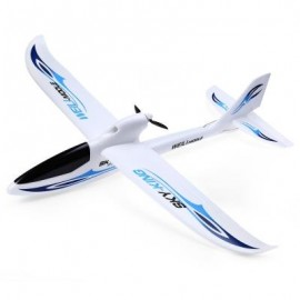image of WLTOYS F959 SKY KING 2.4G 3CH RC AIRCRAFT WINGSPAN RTF AIRPLANE (BLUE) -