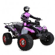 image of FEIYUE FY - 04 1 : 12 FULL SCALE 4WD 2.4G 4 CHANNEL HIGH SPEED CROSSING CAR OFF ROAD RACER (PURPLE) -