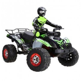 image of FEIYUE FY - 04 1 / 12 FULL SCALE 4WD 2.4G 4 CHANNEL HIGH SPEED CROSSING CAR OFF ROAD RACER (GREEN) -