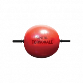 image of GINTELL Torsoball Total Body  Training System