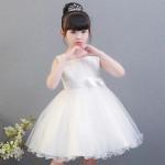 Kids beauty dress/princess dress
