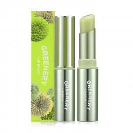 image of 韓國 Nature Republic 春綠系列潤唇膏 3.3g #.04 Green   Korea Nature Republic Greenery Lip Balm 3.3g #.04 Green