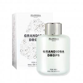 image of 歐洲 Floyesa Deluxe 男性香水 時尚潮男100ml   Europe Floyesa Deluxe Grandiosa Drops For Men Eau De Toilette 100ml