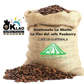image of 瓜地馬拉安提瓜拉米尼塔花神丸豆(半磅)