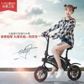 image of DYU Electric Smart Bicycle