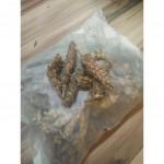 Prunella Vulgaris 夏菇草