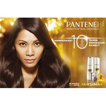 Pantene Hair Shampoo / Rambut 170ml Anti Dandruff Hair Fall Control Silky