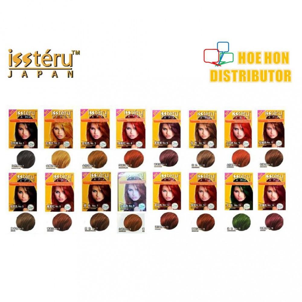 Issteru DIY Color Hair Dye 25ml (HALAL)