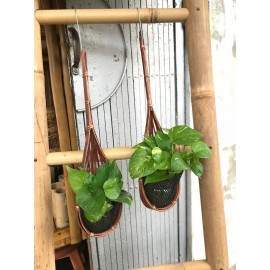 image of Hanging Pot