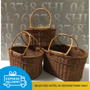 image of 【Express Delivery】Rattan Bag (3 different sizes)