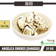 image of Angelica Sinensis (Danggui) Slices (Big) 当归 (大) 37.5G