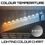 ESMART GEN5 12W COB TRACK LIGHT (WHITE/BLACK)