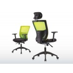 Apex Office Chairs Mesh Series Collection DELCO (CH-DEL-LB-A83-HLB1)