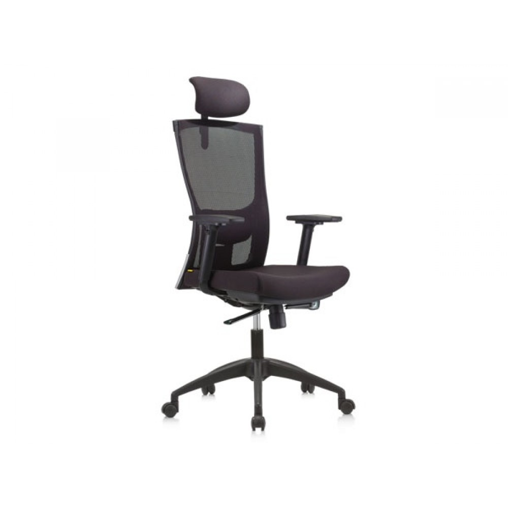 Apex Office Chairs Mesh Series Collection - Netto (CH-M01-HB-A83-HLB1)
