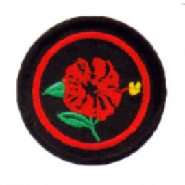 image of PANDU PUTERI PATROL BADGE