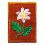 TUNAS PUTERI PATROL BADGE