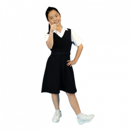 image of PRIMARY SCHOOL PINAFORE - WRINKLE-FREE